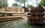 Французская пресса пишет о строительстве в парке семинарии деревянного храма